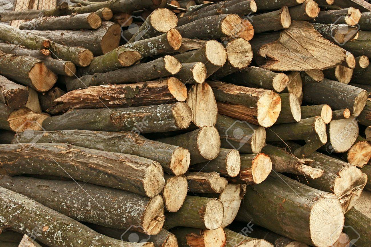 journaux gros tas de charme hachées pour le bois de chauffage banque