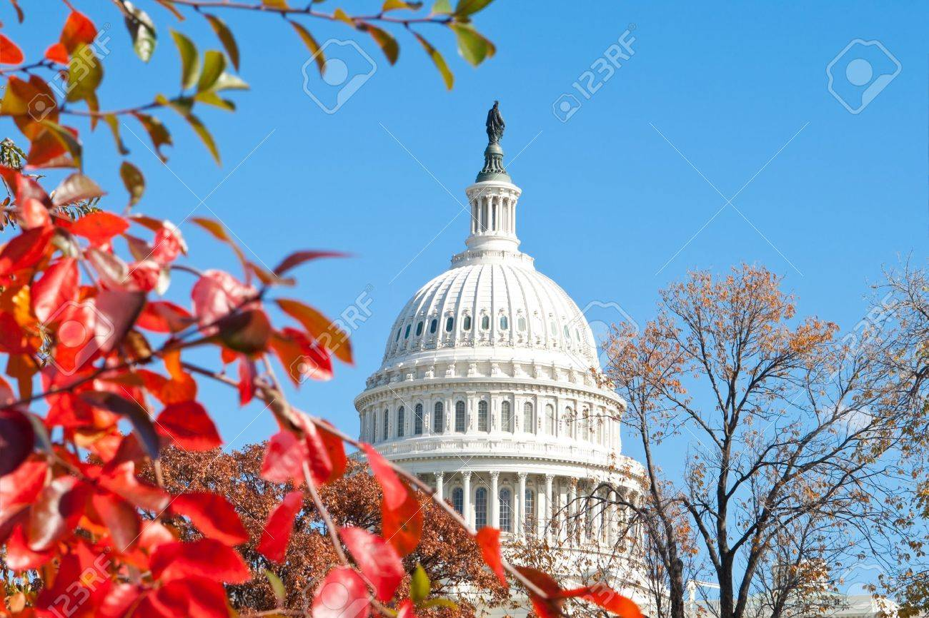 U.S. Capital building in Washington, DC in the fall. Stock Photo - 11397501