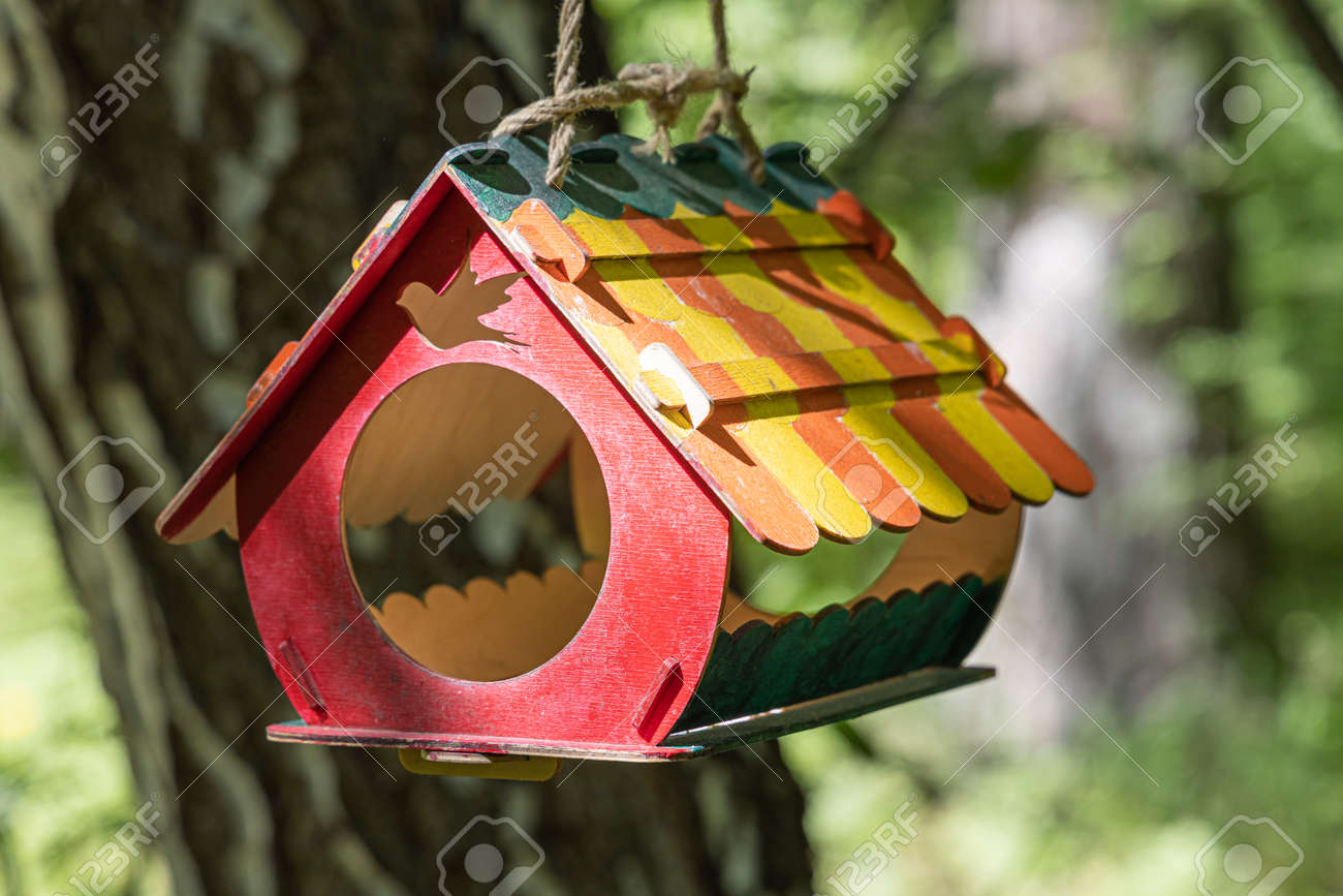 A New colored bird and squirrel feeder house from plywood is hanging on a brown tree in a park in summer - 169319703