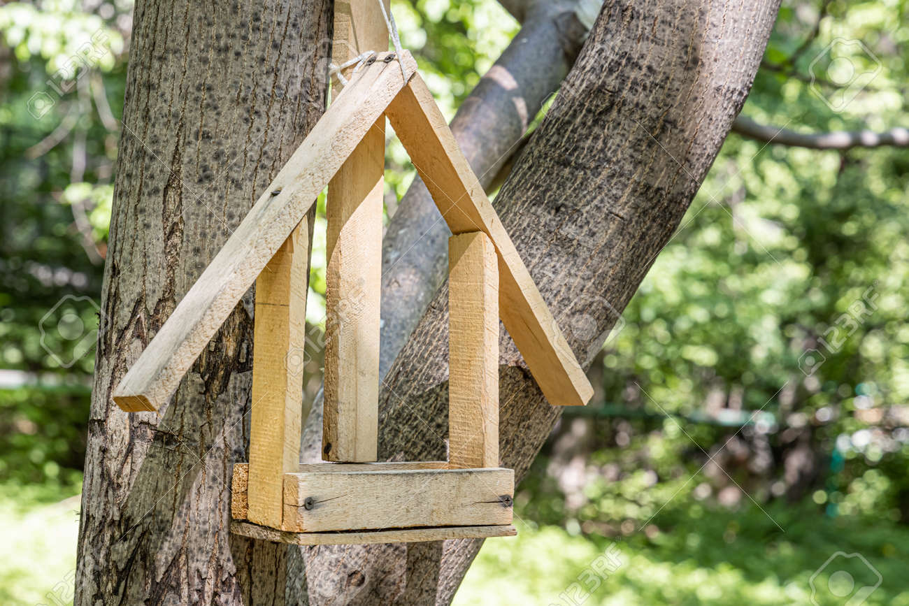 A New yellow bird and squirrel feeder house from plywood is hanging on a brown tree in a park in summer - 169319774