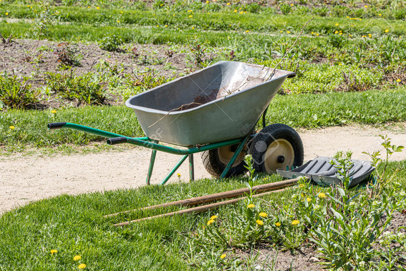 A work on planting seedlings on the flowerbed and trolley in a park in spring we see in the photo - 170076366