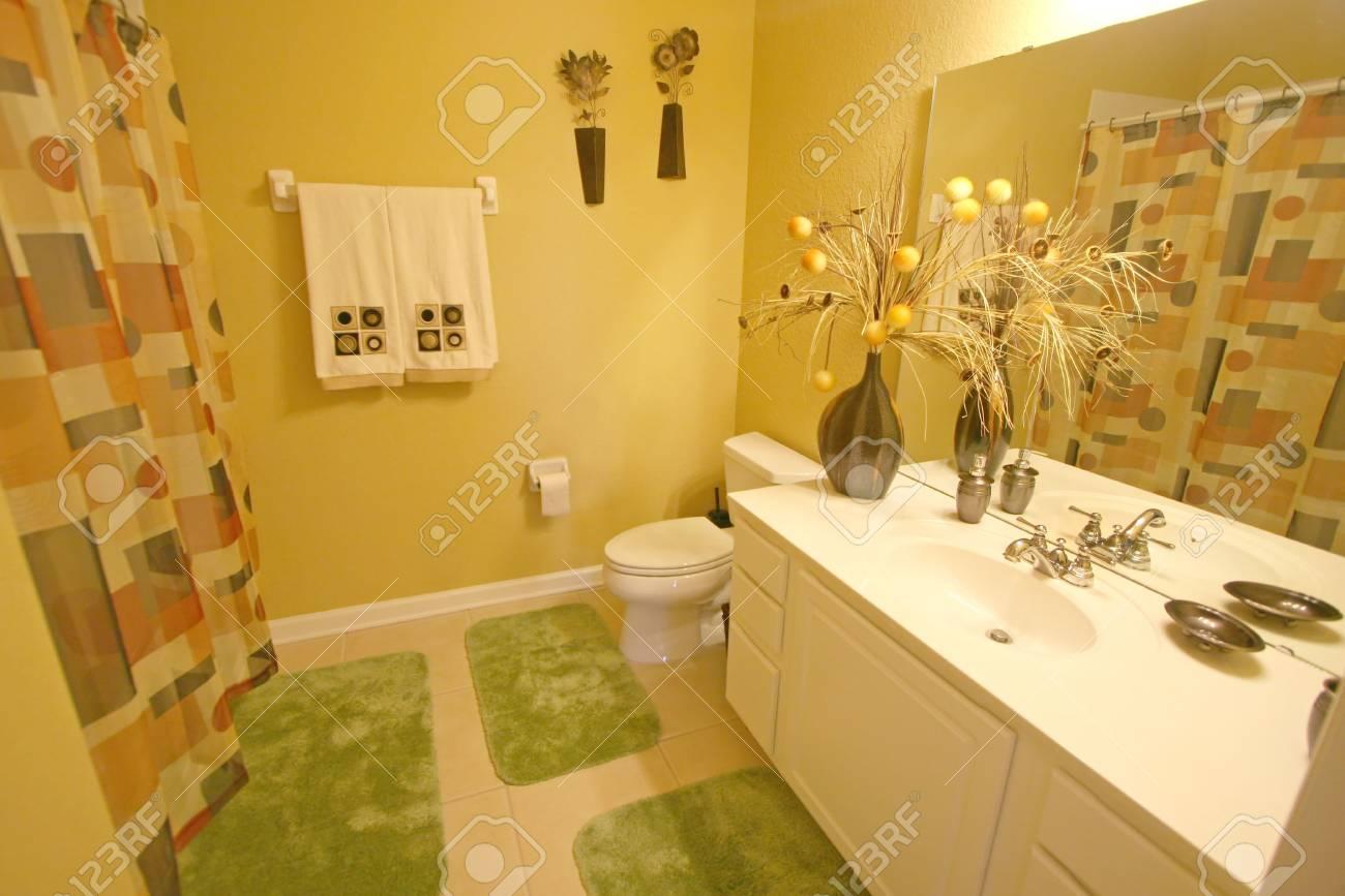 An Interior Shot of a Bathroom in Florida Stock Photo - 5748815