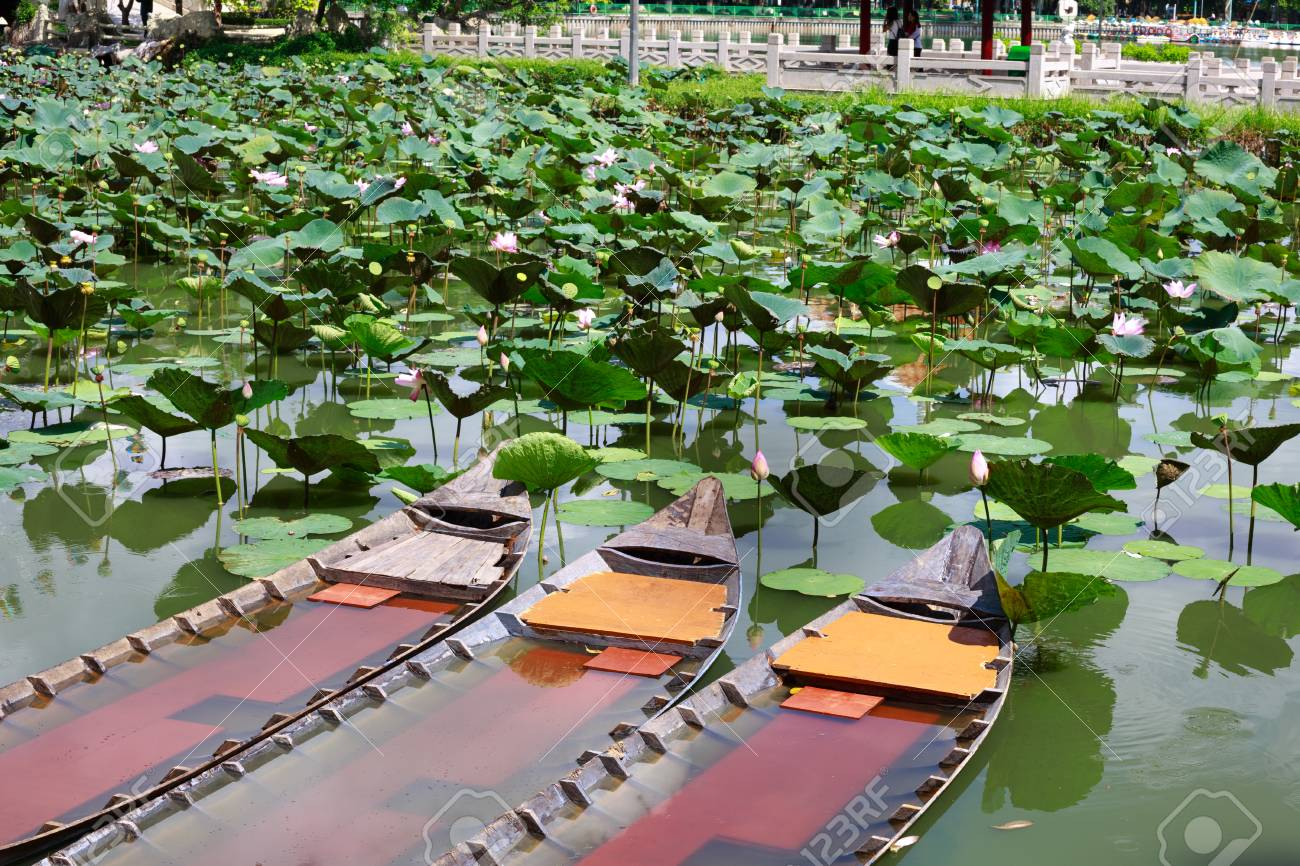 Traditional Vietnamese Boats In A Pond In The Mekong Delta Lotus