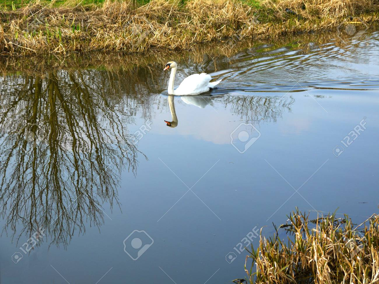 The Leeds and Liverpool Canal is in northern England, linking the cities of Leeds and Liverpool. Stock Photo - 11972734