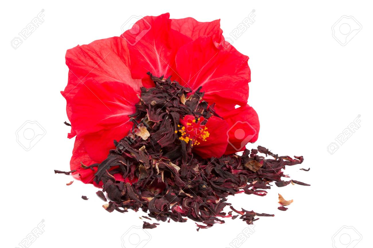 Hibiscus tea and flower isolated on a white background stock photo hibiscus tea and flower isolated on a white background stock photo 11602796 izmirmasajfo