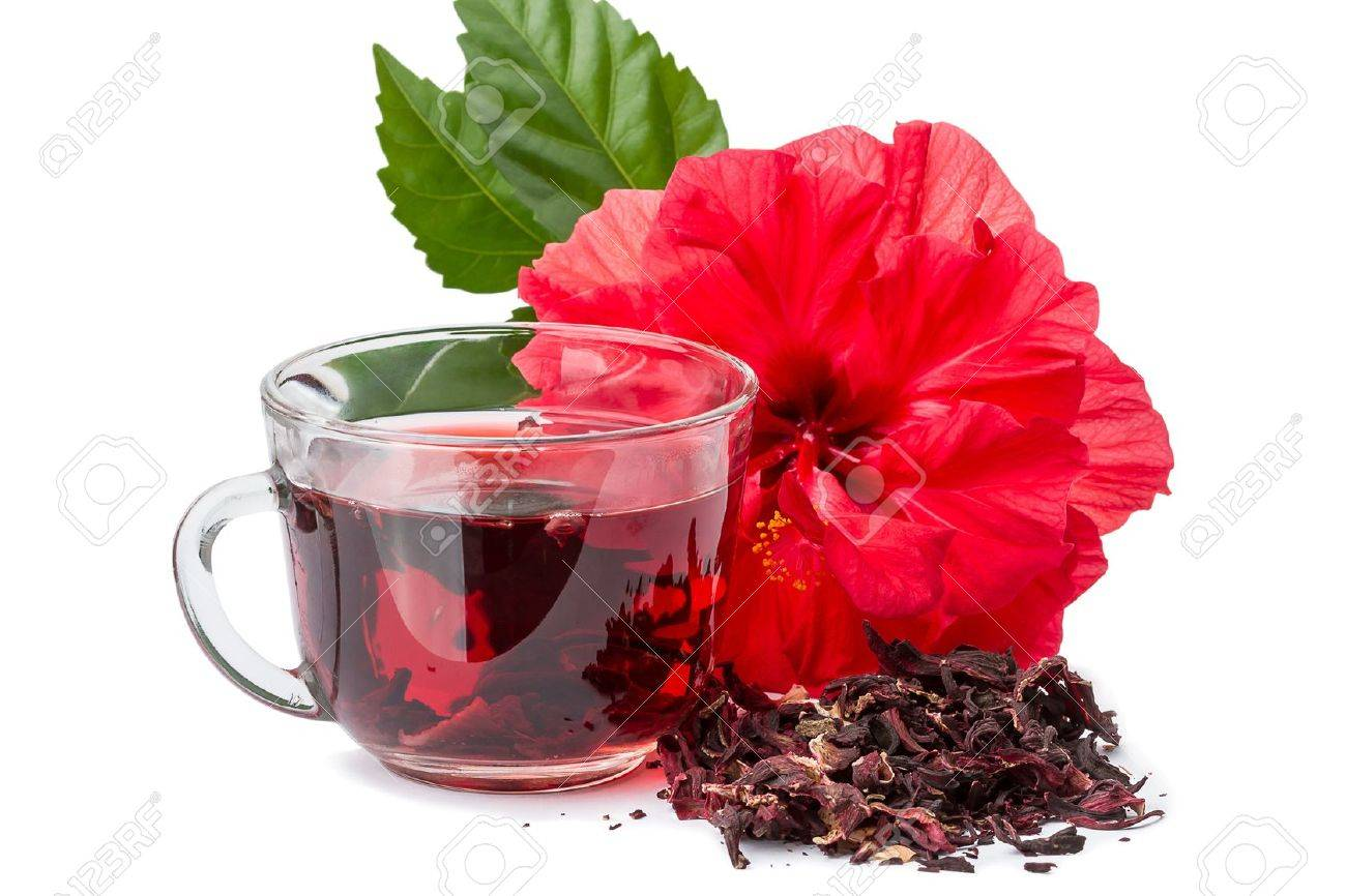 Red flower and hibiscus hot tea isolated on white background stock red flower and hibiscus hot tea isolated on white background stock photo 16643959 izmirmasajfo