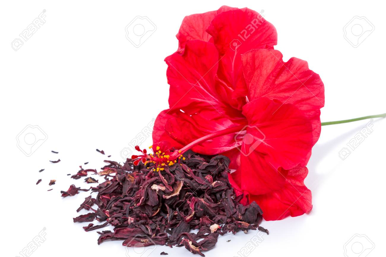 Hibiscus flower and dry tea isolated on white background stock hibiscus flower and dry tea isolated on white background stock photo 75165193 izmirmasajfo