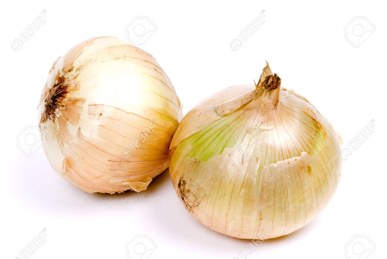 onion vegetable isolated on white background Stock Photo - 17075581