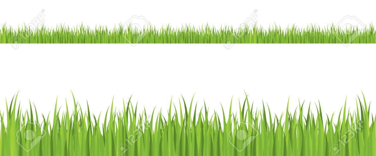 Seamless grass illustration Stock Vector - 4259623