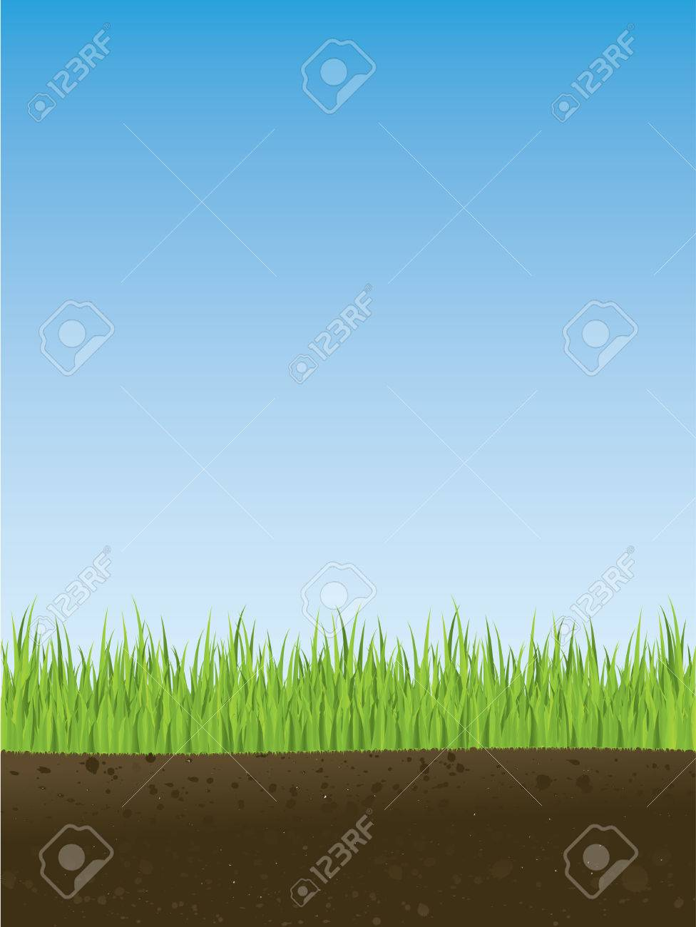 Cross section of spring grass Stock Vector - 4295608