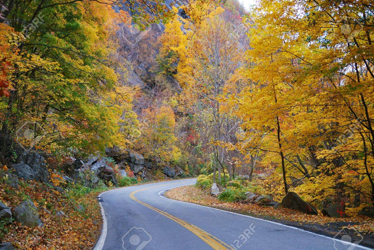 Winding road in Autumn woods with colorful foliage tree in rural area. Stock Photo - 8398018