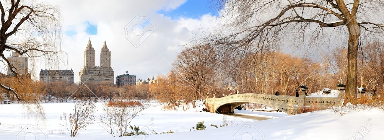 New York City Manhattan Central Park panorama in winter with ice and snow over lake with bridge,  skyscrapers and blue cloudy sky at dusk. Stock Photo - 9366088