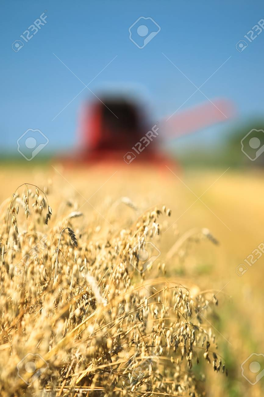 Combine harvester working in a wheat field Stock Photo - 7823320