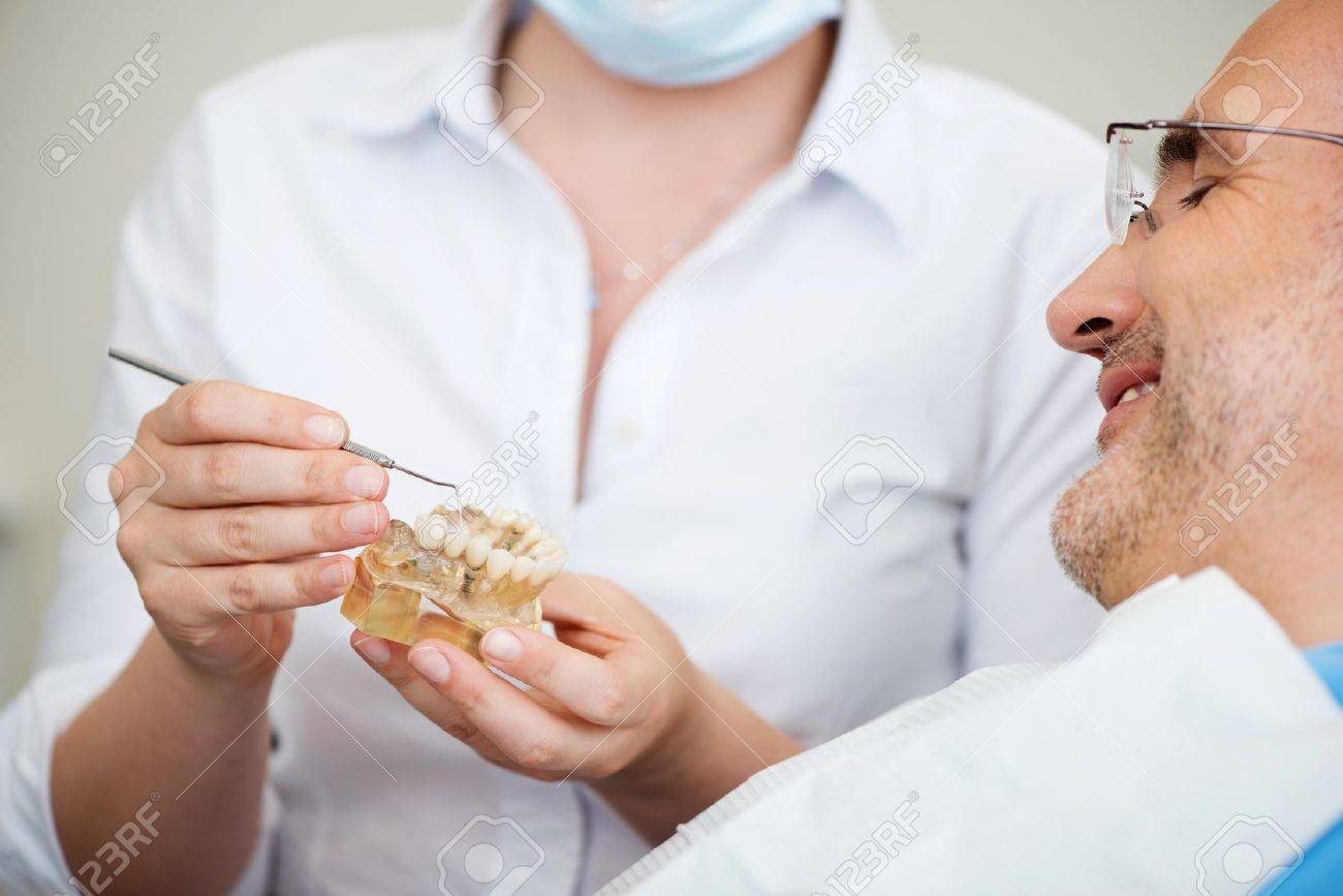Midsection of female dentist explaining artificial teeth to patient in clinic Stock Photo - 21246832