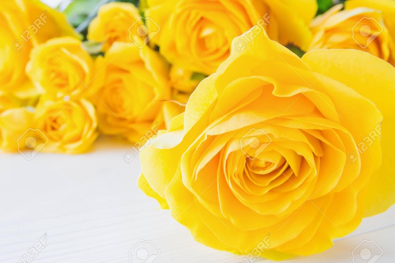 Berühmt Frische Gelbe Rosen, Nahaufnahme. Blumen Der Gelben Rosen #CL_92
