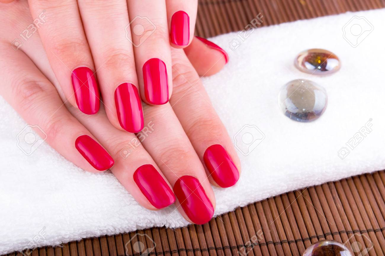 Beautiful Hands With French Manicure Nails Stock Photo, Picture And ...