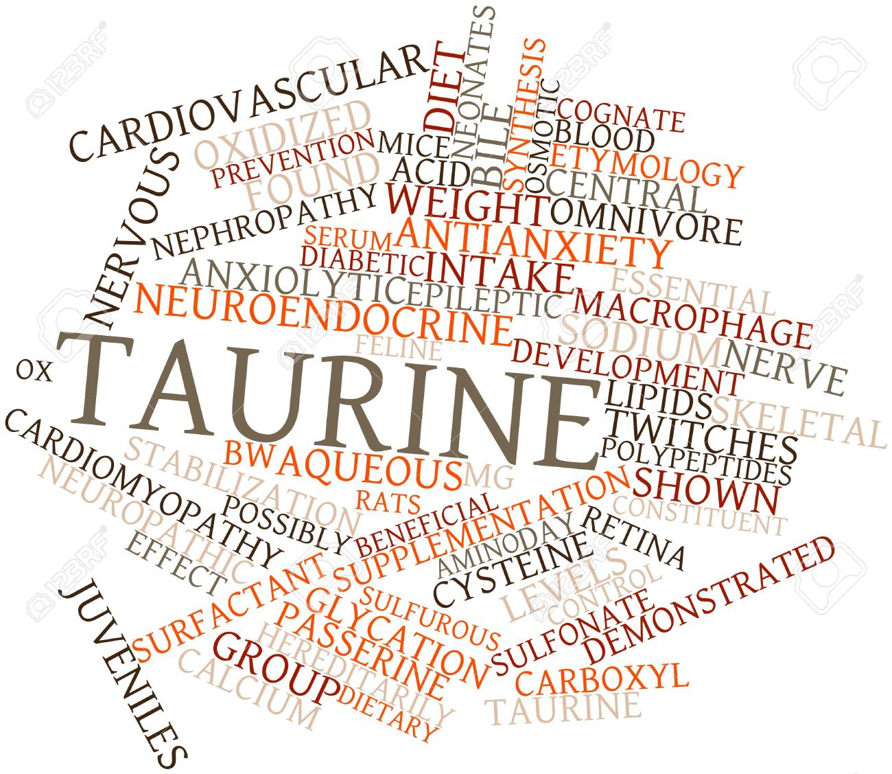 Abstract word cloud for Taurine with related tags and terms Stock Photo - 16084217