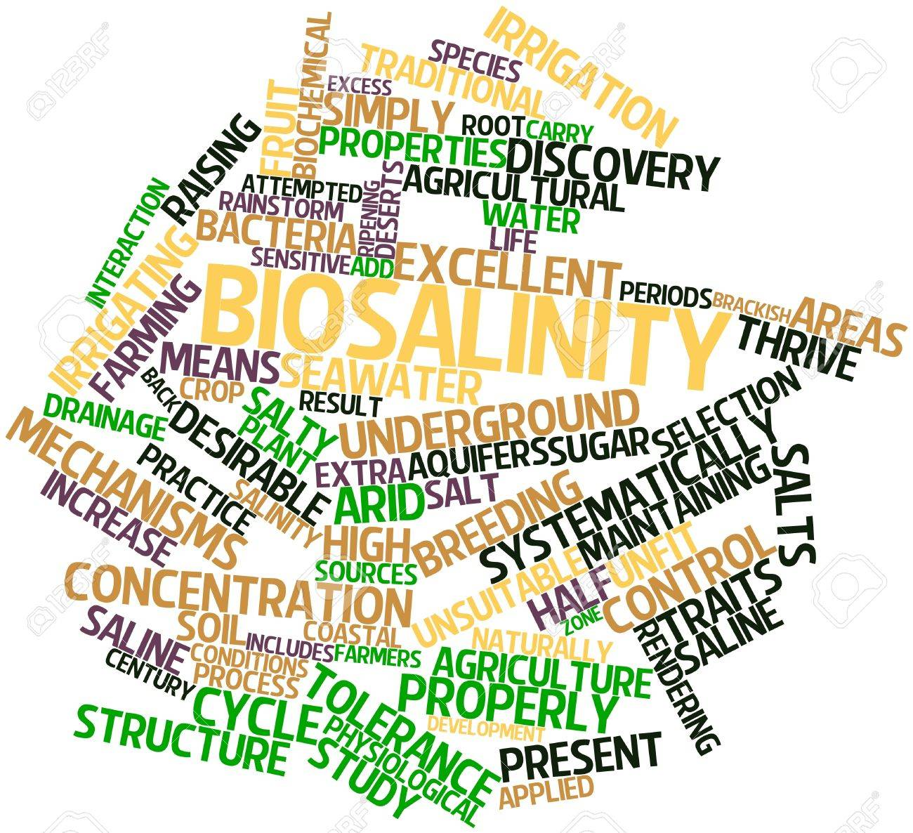Abstract word cloud for Biosalinity with related tags and terms Stock Photo - 16499080