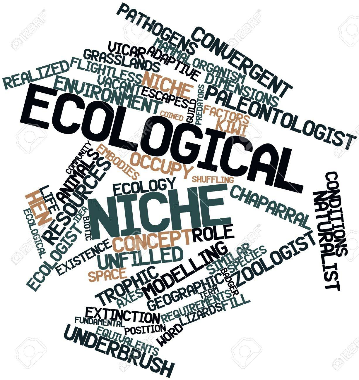 Abstract word cloud for Ecological niche with related tags and terms Stock Photo - 16498673