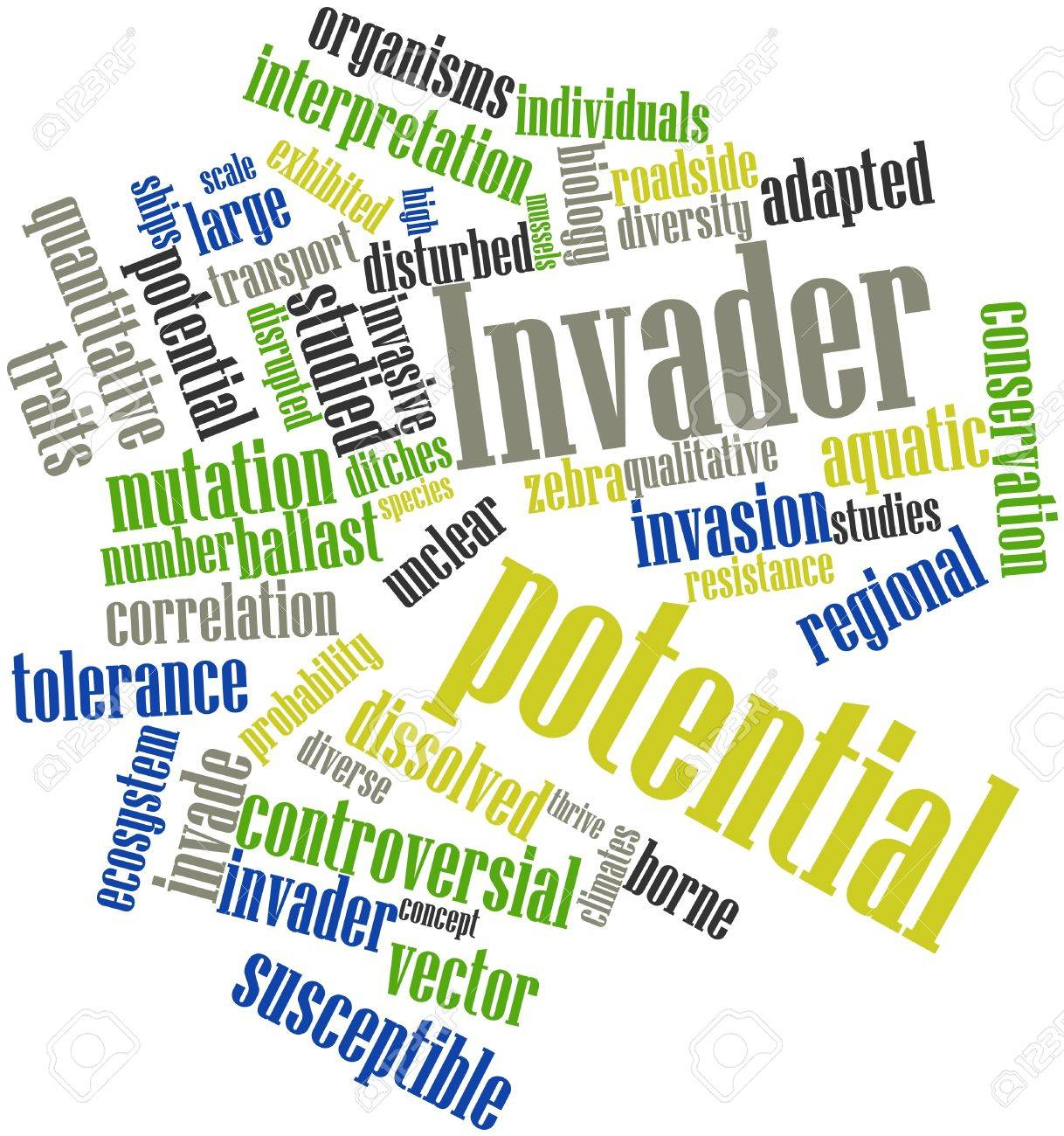 Abstract word cloud for Invader potential with related tags and terms Stock Photo - 16498762