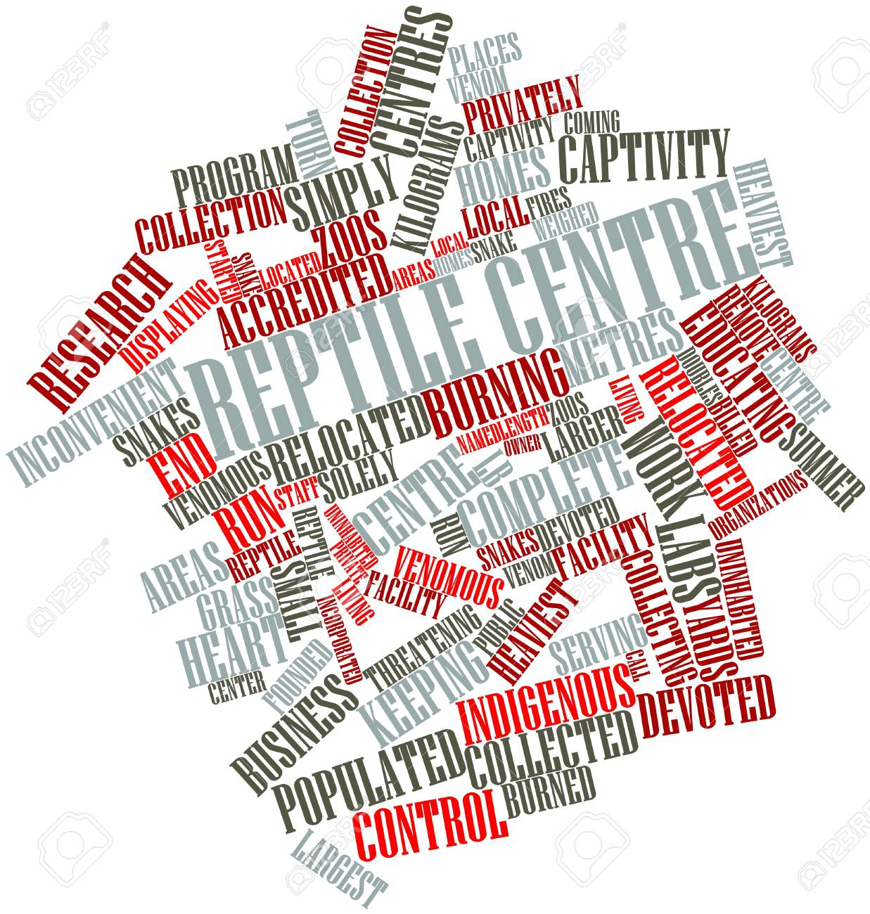 Abstract word cloud for Reptile centre with related tags and terms Stock Photo - 16499304