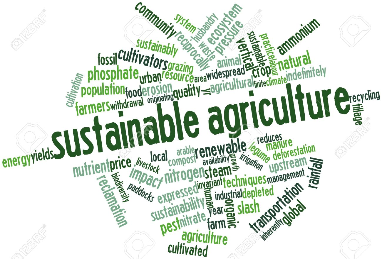 Image result for sustainable agriculture
