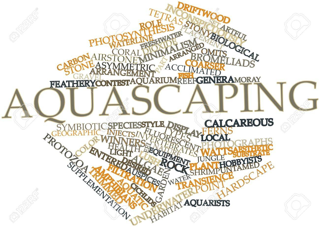 Abstract word cloud for Aquascaping with related tags and terms Stock Photo - 16499912