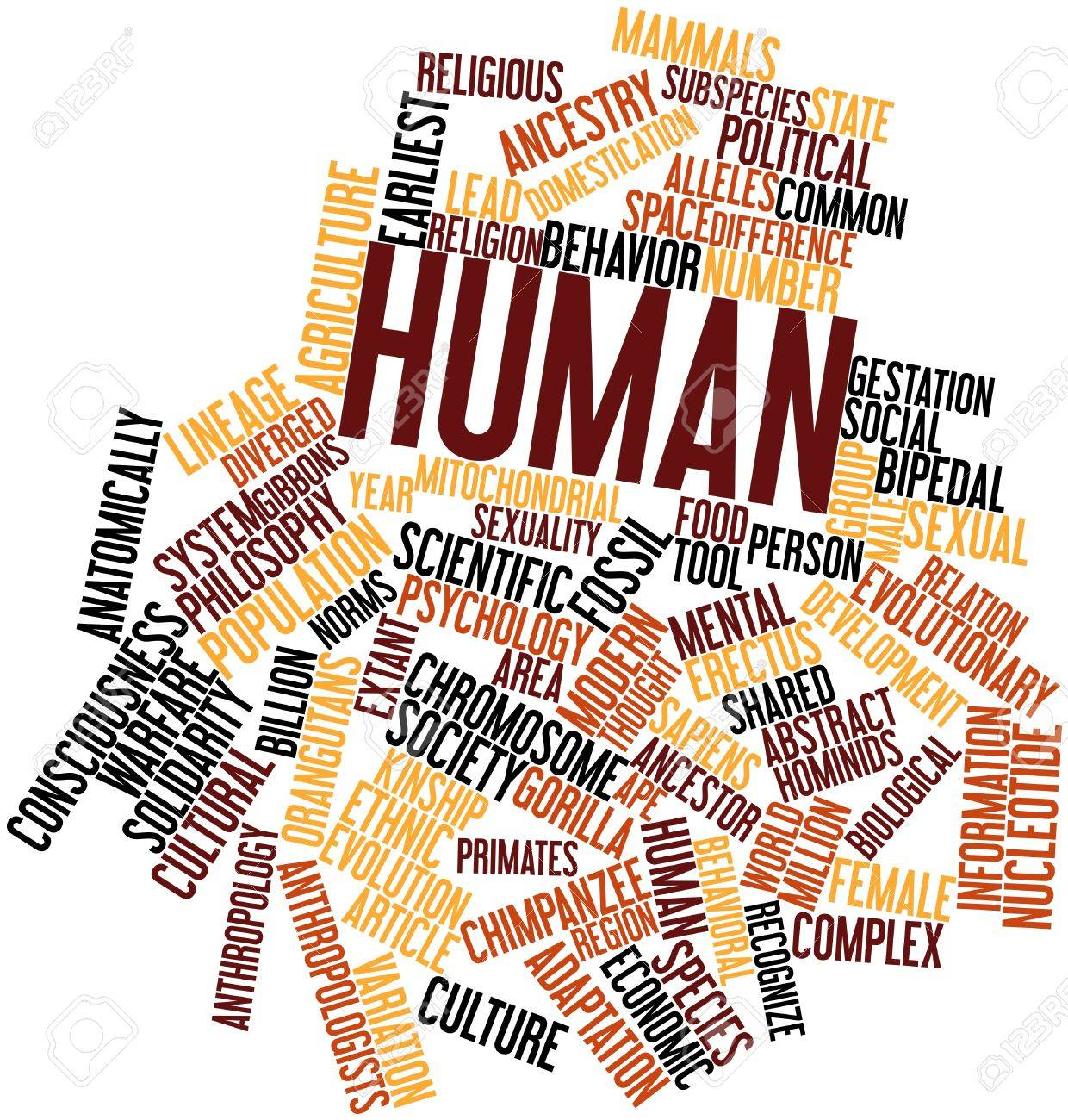 Abstract word cloud for Human with related tags and terms Stock Photo - 16629623