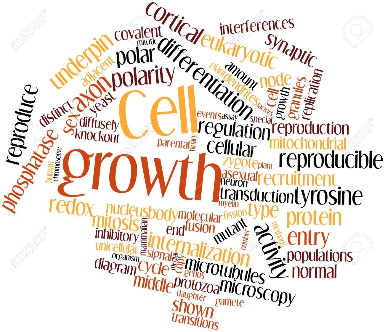 Nube Palabra Abstracta Para El Crecimiento Celular Con Etiquetas Y ...