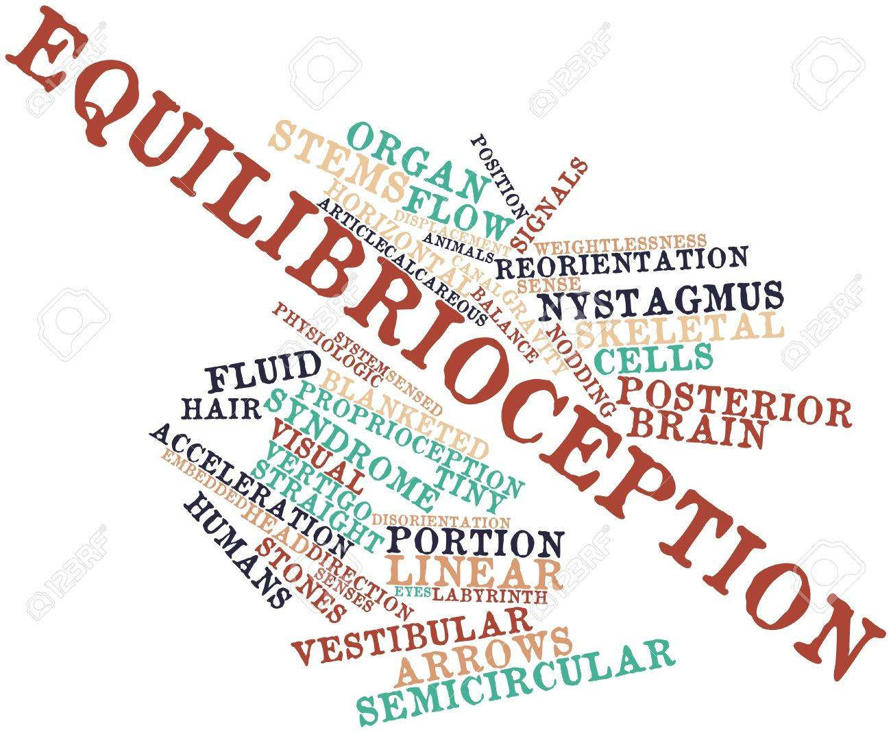 Abstract word cloud for Equilibrioception with related tags and terms Stock Photo - 16678310