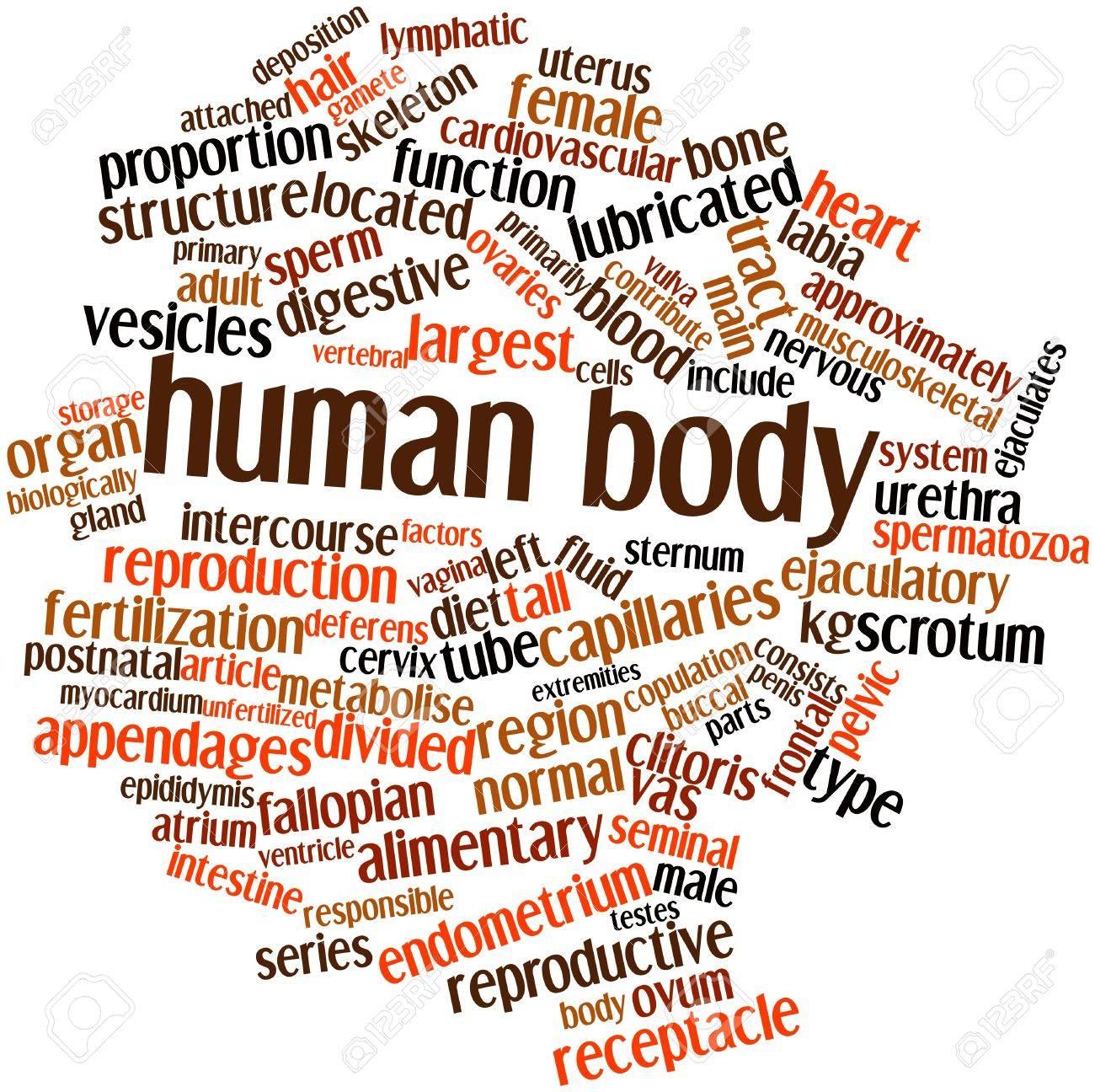 Nube Palabra Abstracta Para El Cuerpo Humano Con Las Etiquetas Y ...