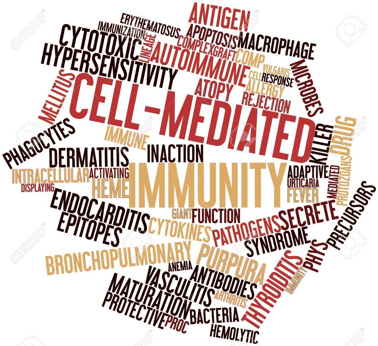 Nube Palabra Abstracta Para Inmunidad Mediada Por Células Con ...