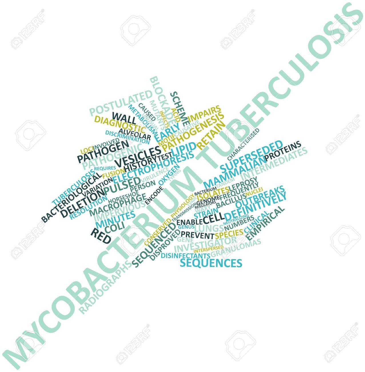 Abstract word cloud for Mycobacterium tuberculosis with related tags and terms Stock Photo - 16678644