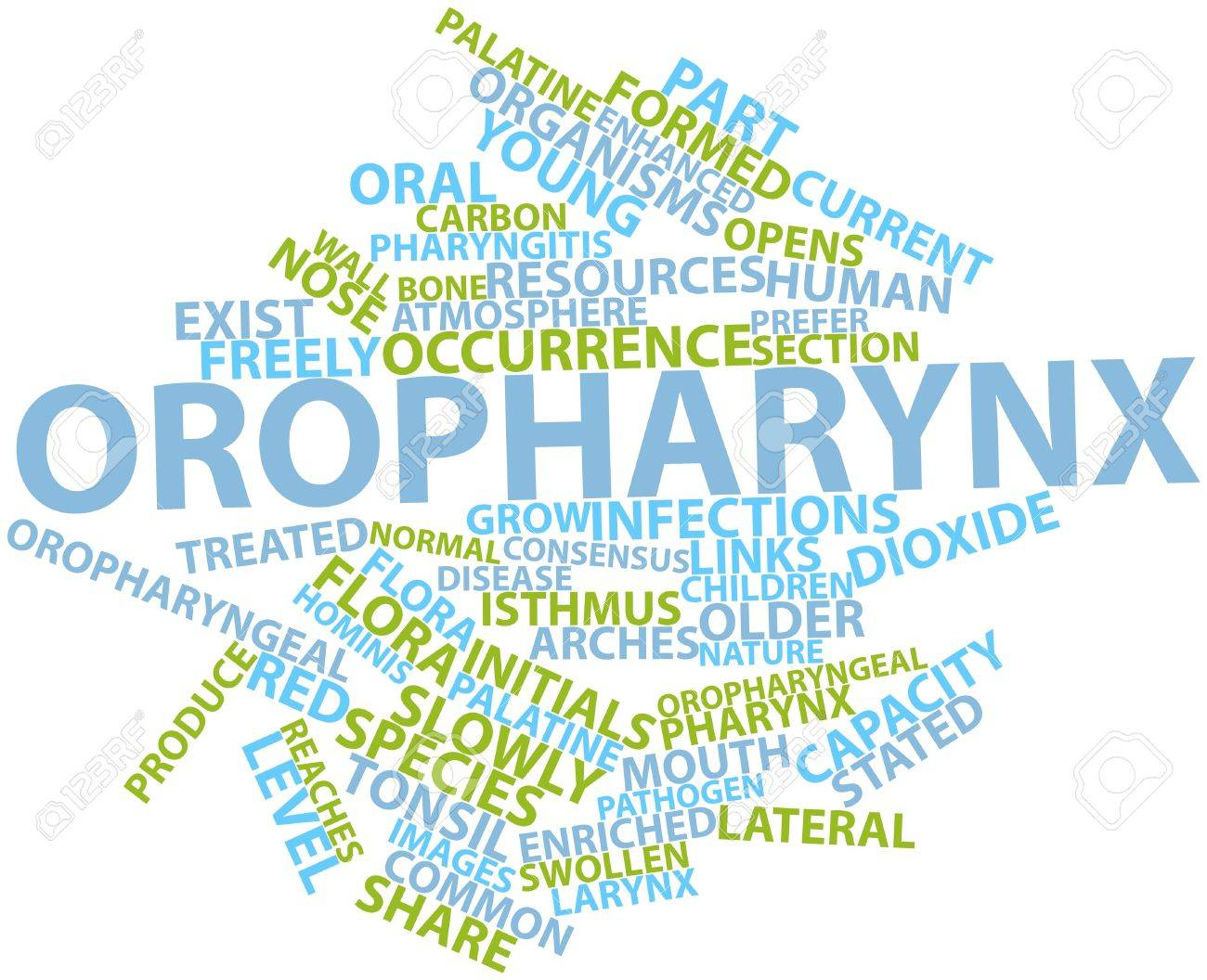Abstract word cloud for Oropharynx with related tags and terms Stock Photo - 16678637
