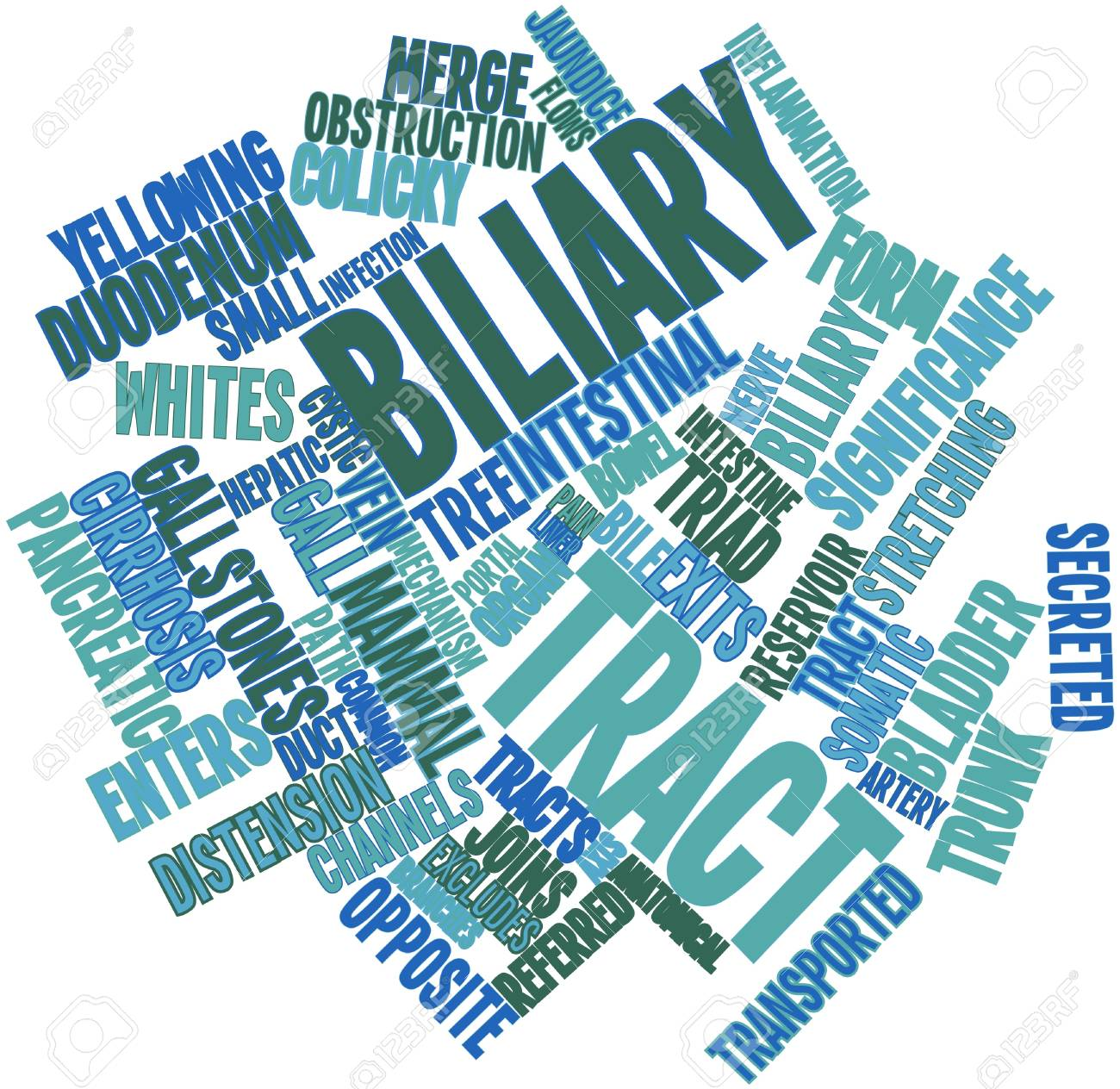 Abstract word cloud for Biliary tract with related tags and terms Stock Photo - 16720865