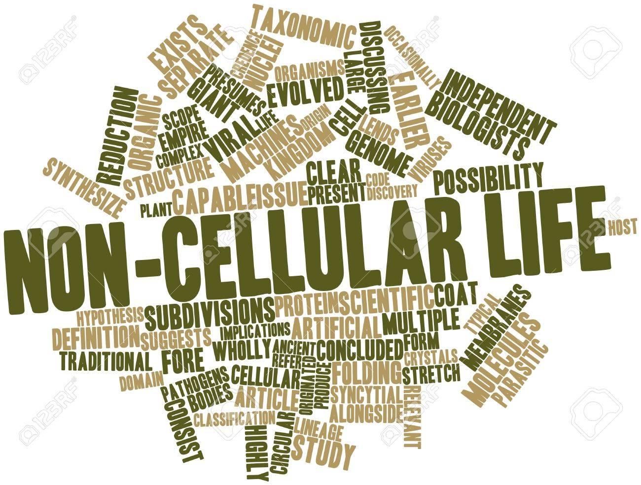 Nube Palabra Abstracta Para No Celulares Vida Con Las Etiquetas Y ...