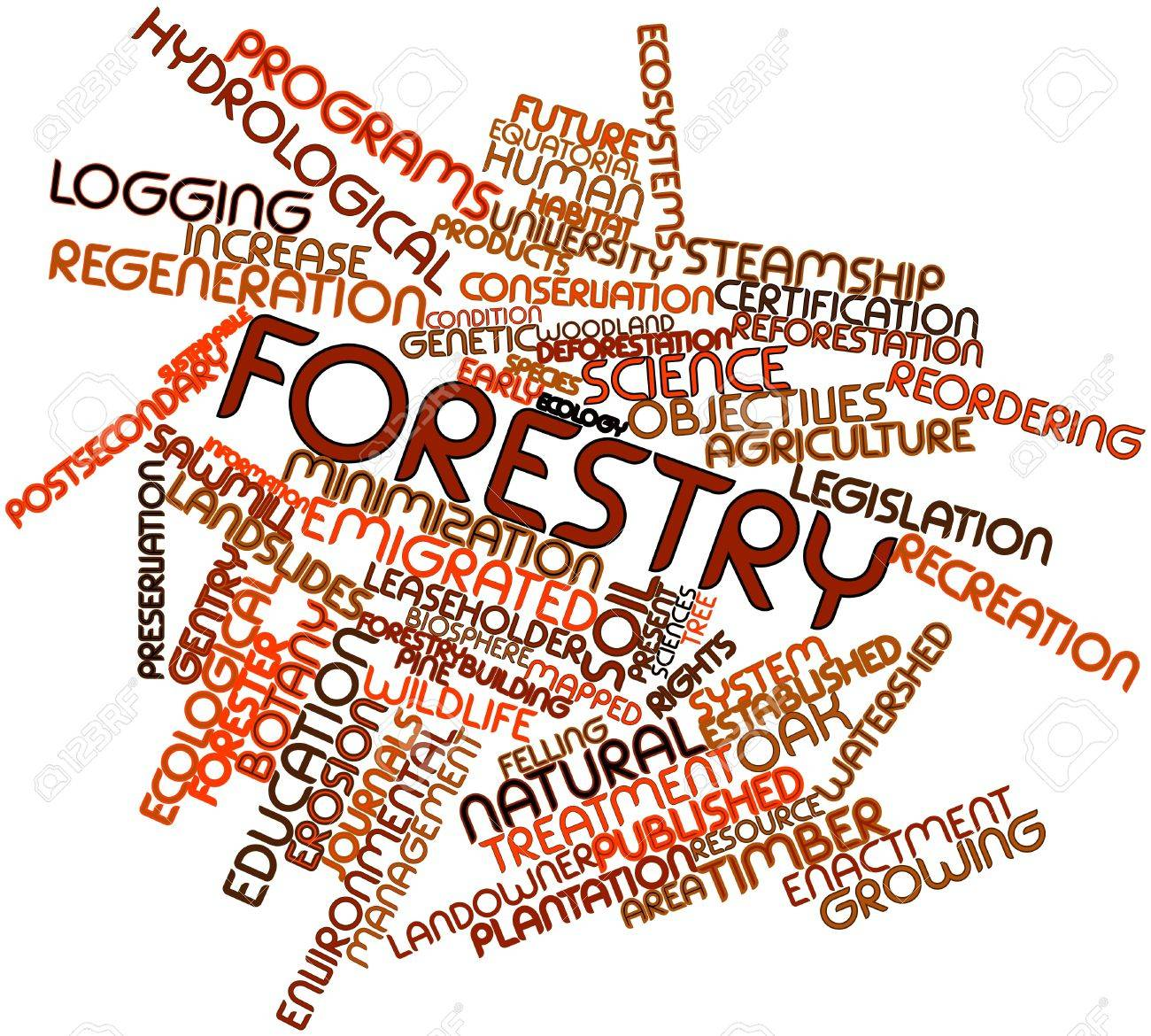 Abstract word cloud for Forestry with related tags and terms Stock Photo - 17029562