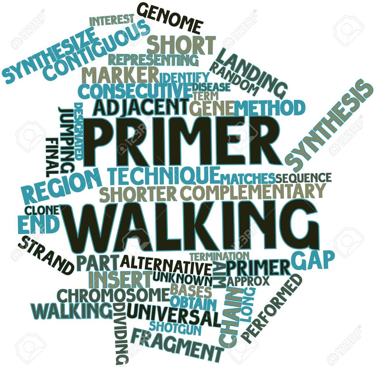 Abstract word cloud for Primer walking with related tags and terms Stock Photo - 17023733