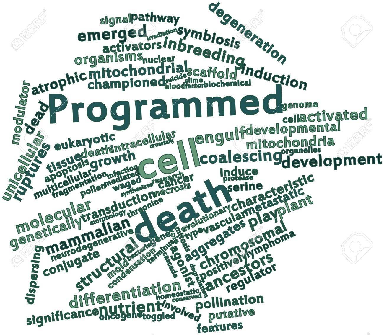 Nube De La Palabra Abstracta De La Muerte Celular Programada Con Las ...