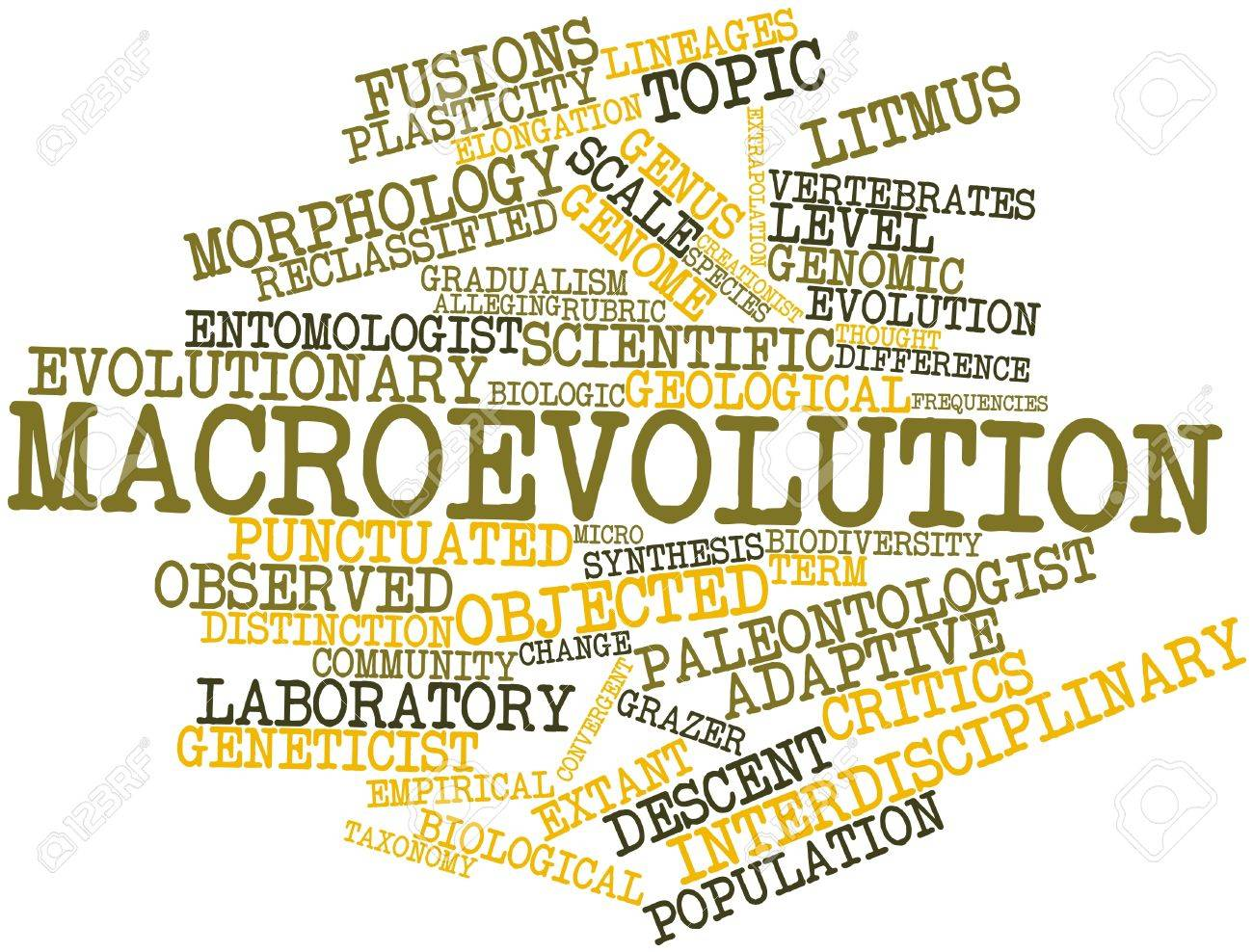 Abstract word cloud for Macroevolution with related tags and terms Stock Photo - 17023585