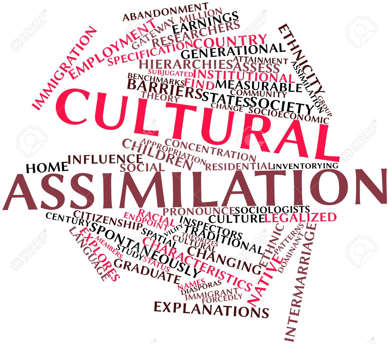 What is assimilation