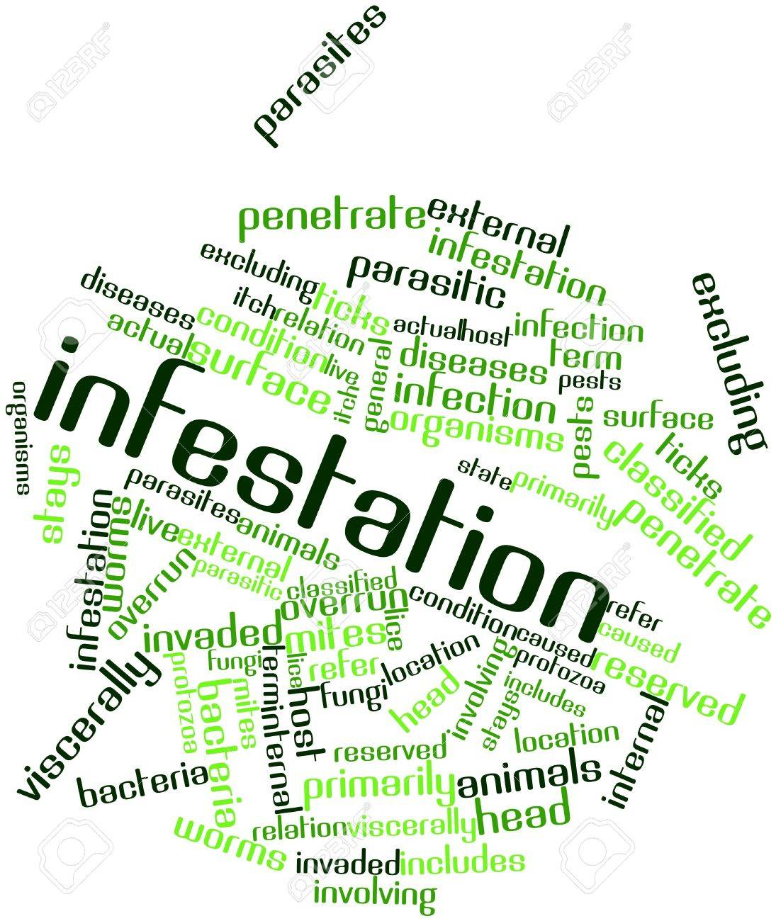 Abstract word cloud for Infestation with related tags and terms Stock Photo - 17197294