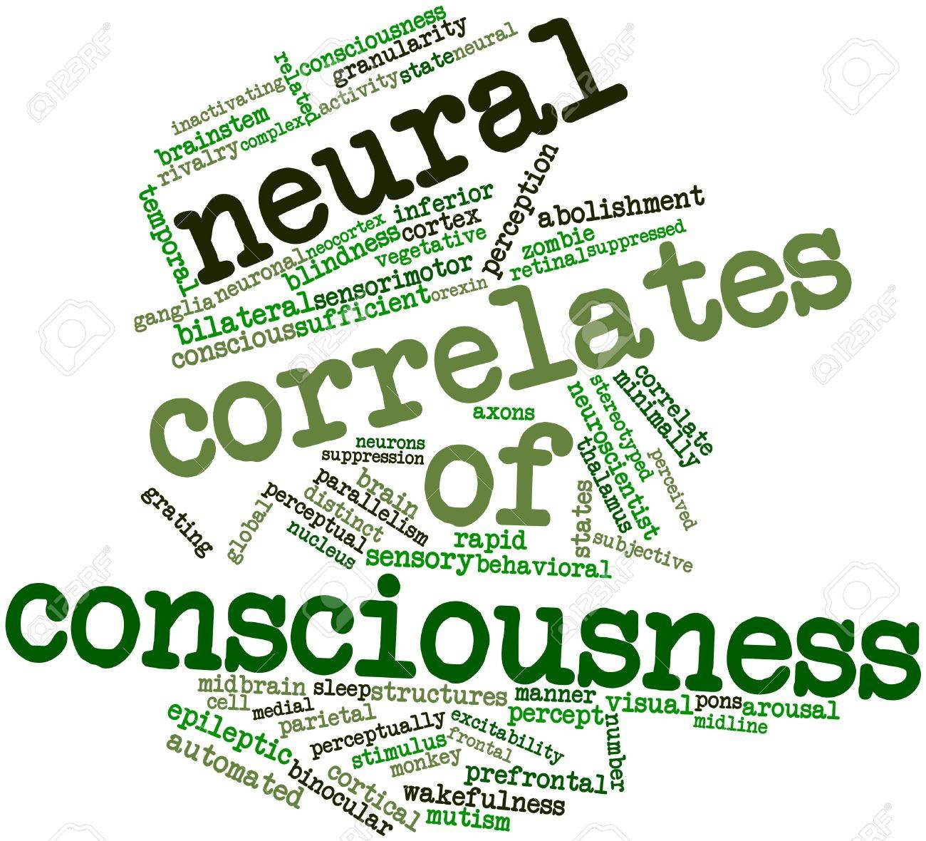 Abstract word cloud for Neural correlates of consciousness with related tags and terms Stock Photo - 17197530
