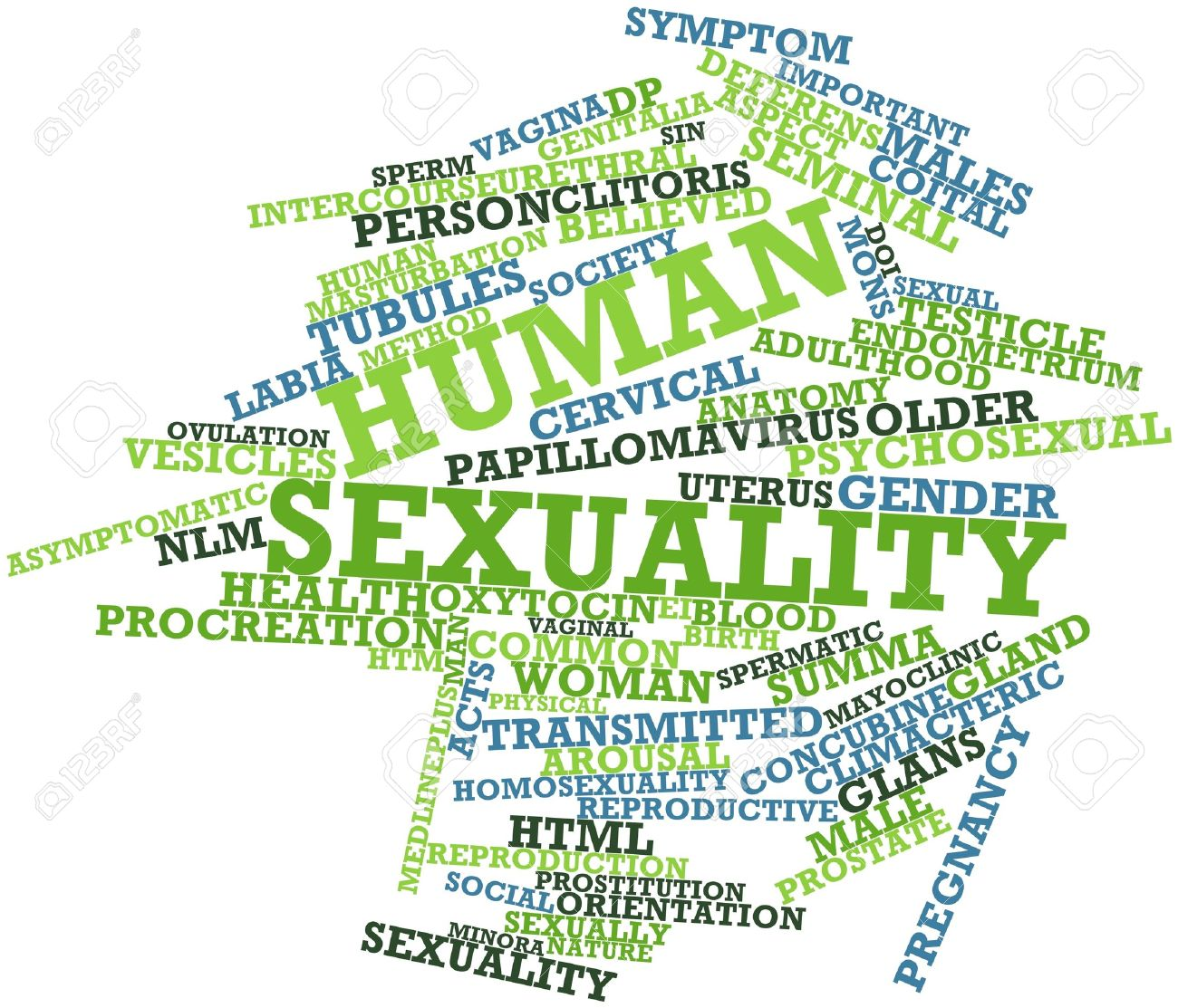 abstract word cloud for human sexuality with related tags and