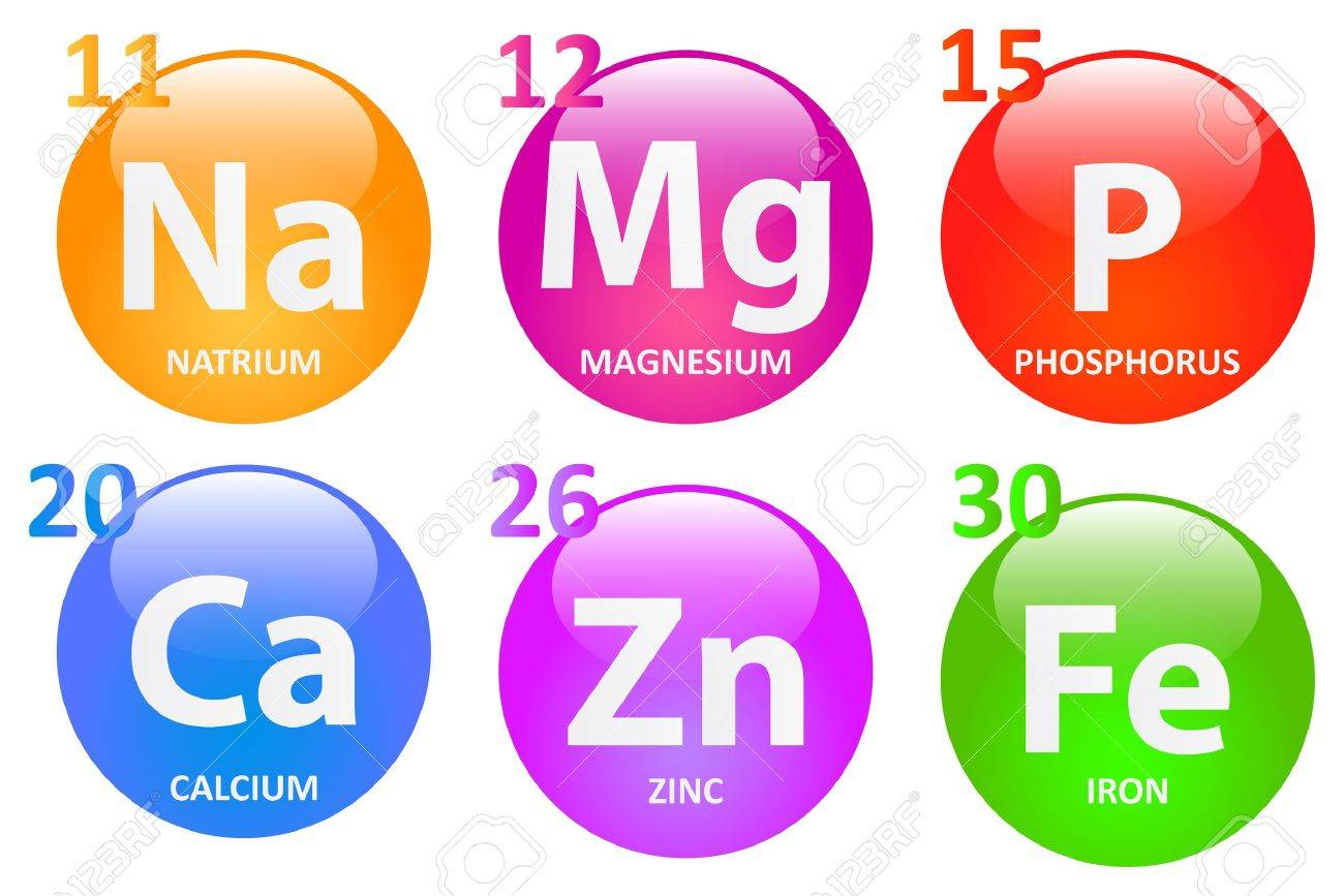 Essential Minerals For A Healthy Life Stock Vector - 19939180