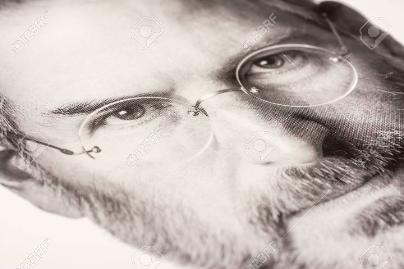 Steve Jobs Biography Book