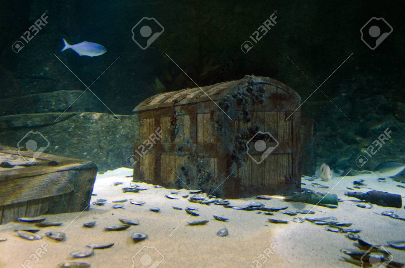 underwater treasure chest box site on the sea floor stock photo