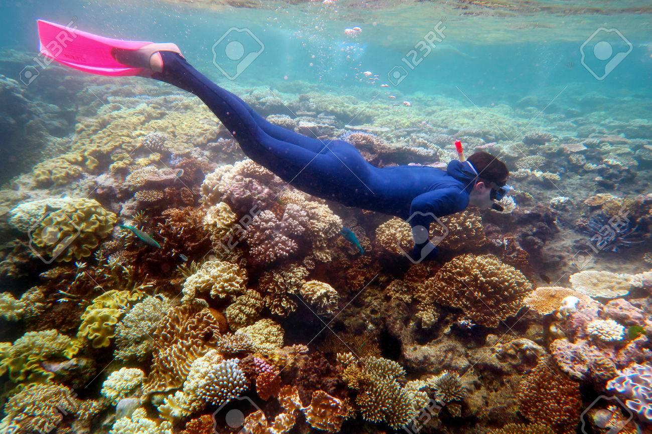 Woman snorkeling dive in the Great Barrier Reef Queensland Australia - 57327028