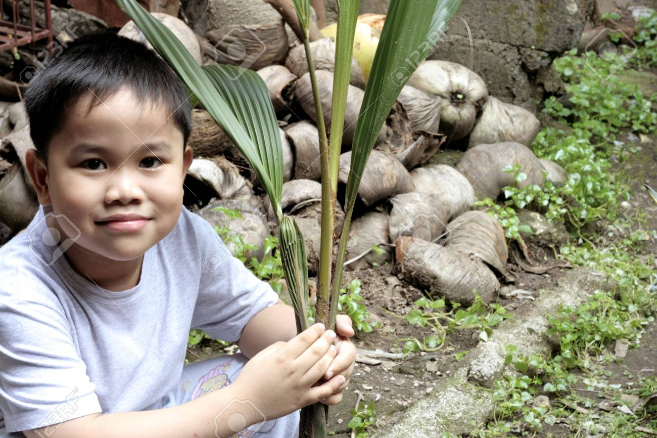 Child Holding a Coconut Seedling Stock Photo - 2404553