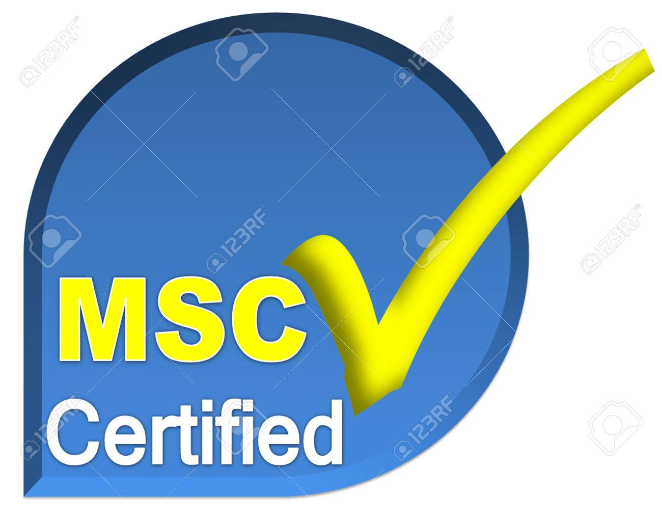 Certificate Logo Or Symbol Of MSC System On Blue Color Stock Photo ...